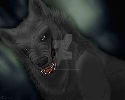 :PA: dramatic wolf stares into your sOUUUUUL by CrazedTheratis