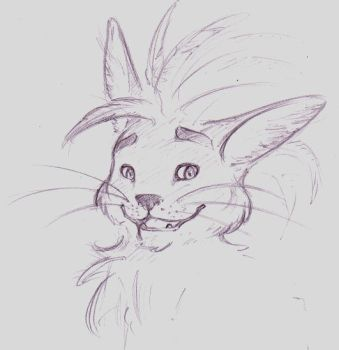Feathered Feline by vonded