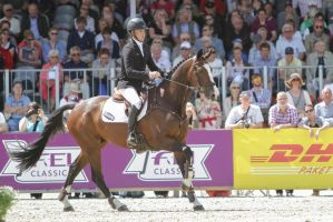 Show Jumping Phase Wesko KWPN Stock 8 by LuDa-Stock