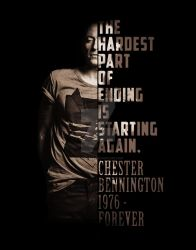 Chester-Bennington own memorial by chrisi-cry25