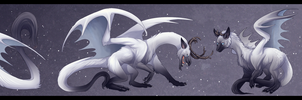 Snow Dragon by Bakura-sama