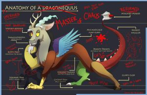 Anatomy of a Draconequus by GhostlyMuse