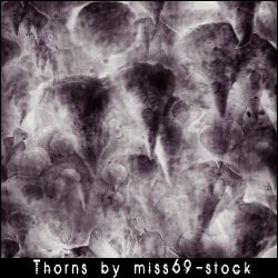 Thorn brushes by miss69-stock