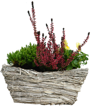flowers basket png by gd08