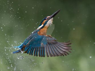up, up and away by Jamie-MacArthur