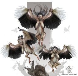Harpies by Vincent-Covielloart