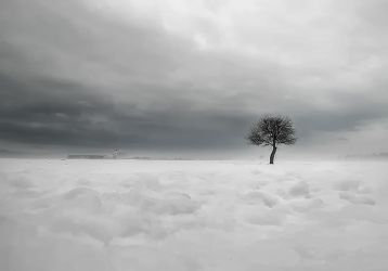 lonely tree by GDALLIS