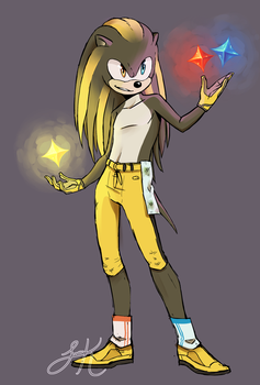 Yinz The Hedgehog by Leemak