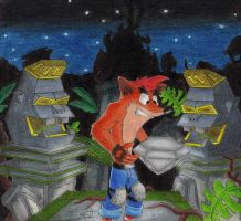 Crash Bandicoot Road To Ruin by DSA09