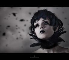Crow by Elisanth