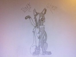 Storm and Dark by Storm-furry
