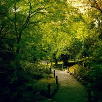 Garden Path by Kamik636