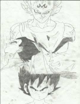 Vegeta Collage by takeaway19