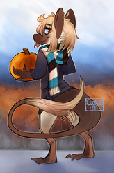 Autumn 2017 by Cootsik