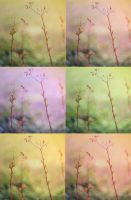 SweetPea Pastels Action by SweetPeaPhototc