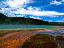 Prismatic Spring by KRHPhotography