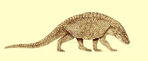 Armadillosuchus by Kahless28
