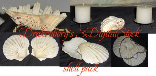 Shell pack by 3DigitalStock