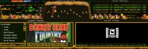 Donkey Kong Country amp by luigihann