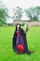 Morgana with falcon 1 by RavenInAGoldenCage
