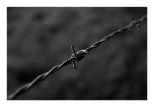Barbed Wire 2 by bills2020