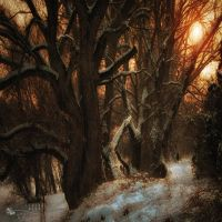 are we small? by ildiko-neer