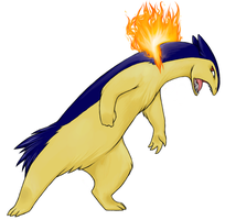 Rage of a Typhlosion by dragonrise