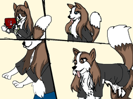 Collie Tf 2 by TheSilentJenny25