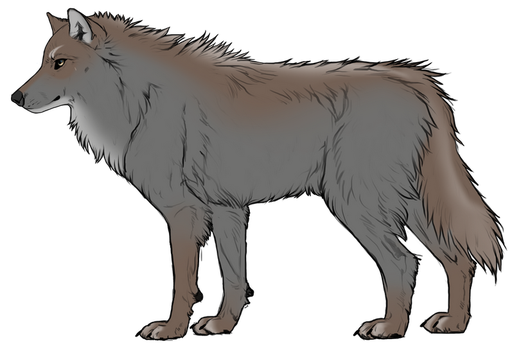 Wolf adoptable - closed by LoneWolf91