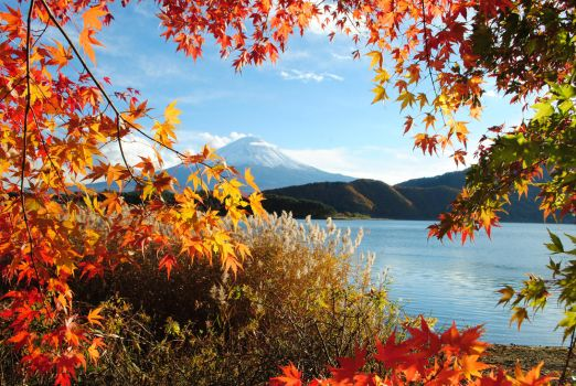 An autumn Fuji by sarafay