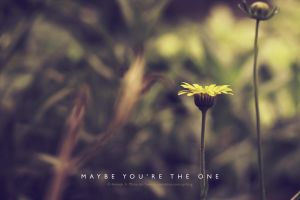 ... maybe you're the one by lalitkala