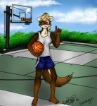 Basketball Yeys by Scrat-Riker