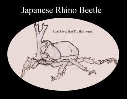 Japanese Rhino Beetle, Insect Buddies series 2 by UnicronHound