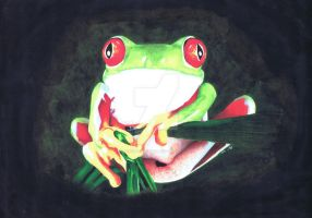 Frog by luckynumber29