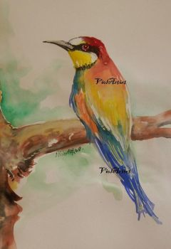 Bee-eater by ViolArtist