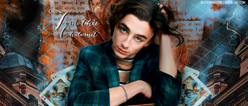 THIMOTEE CHALAMET by RockingWithLights