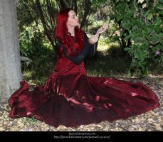 Rose Red11 by faestock