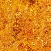Golden Texture 5752 by DonnaMarie113