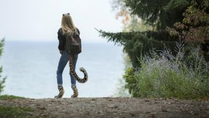 Leopard by Computer-Faced