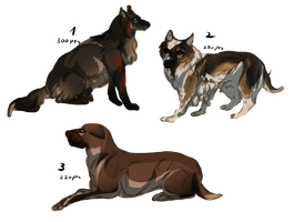 Mix dog adopts /All open by Mossasaurus