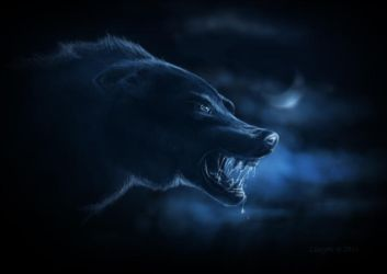 White Wolf by Linsy96