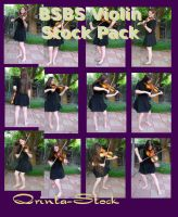 BSBS Violin Stock Pack by Qrinta