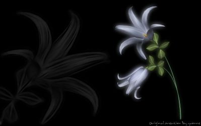 Rain Lily Widescreen by yvonnesnet