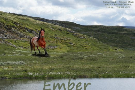 Ember :: This Life isn't a Fairy Tale by Tigress-qwe