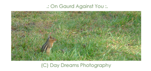 .:On Guard Against You:. by DayDreamsPhotography