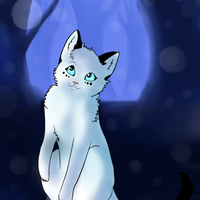 I know my way by Snowstorm-cat