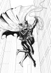 Batman and Catwoman lines by Raydzl