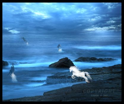 Water Spirits... by aShadowInTheMoon