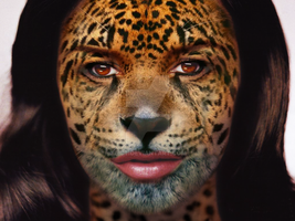 jaguar face by eict