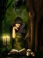 The book of shadows.. by PakinamElBanna
